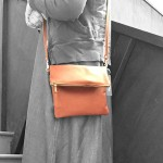 Webster Crossbody Bag